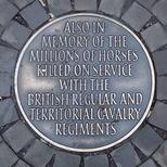 Animlas in war - horses
