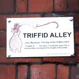 Triffid Alley